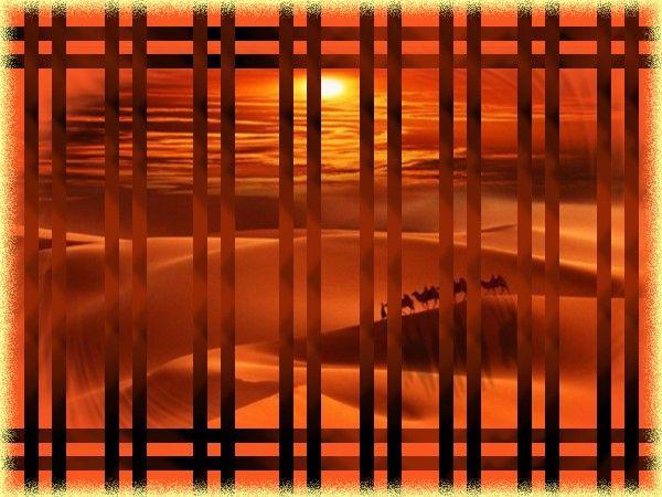 fond-oranger-cadrier.jpg